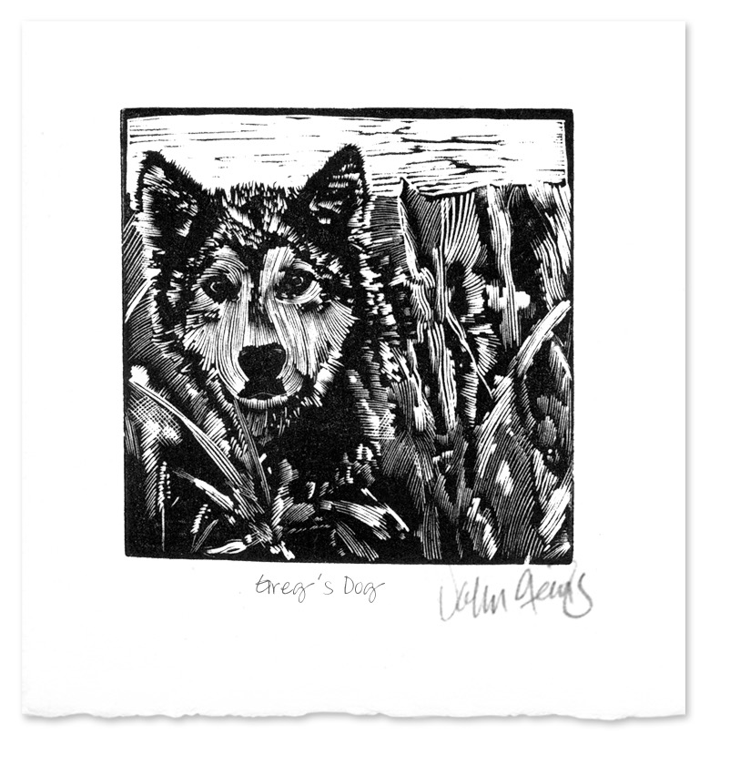 Greg's Dog ~ Wood Engraving ~ John Steins